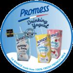 Affiche-Promess-DYS-RONDE-RVB-WEB